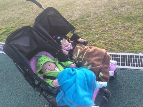 お散歩中の双子