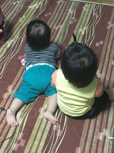 双子がテレビを見る