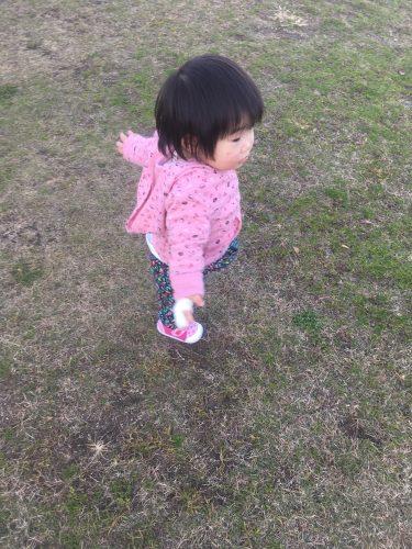公園をさんぽ